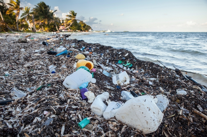Plastic Waste washed up at shore, Turneffe Atoll, Caribbean, Belize
